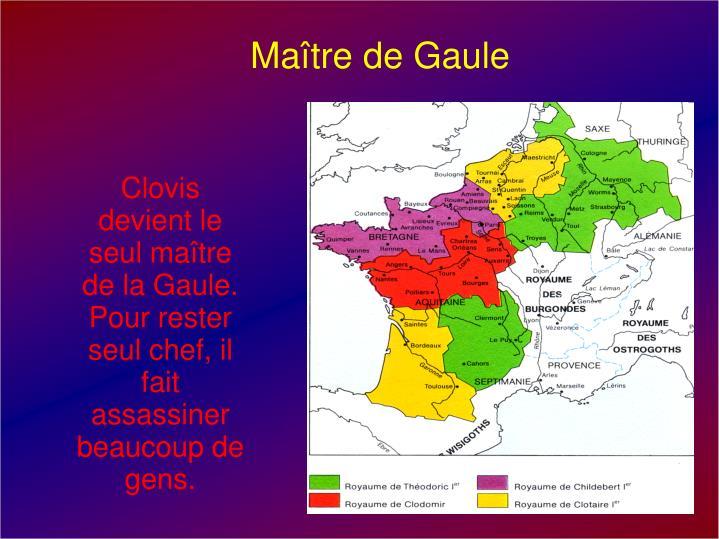 Maître de Gaule