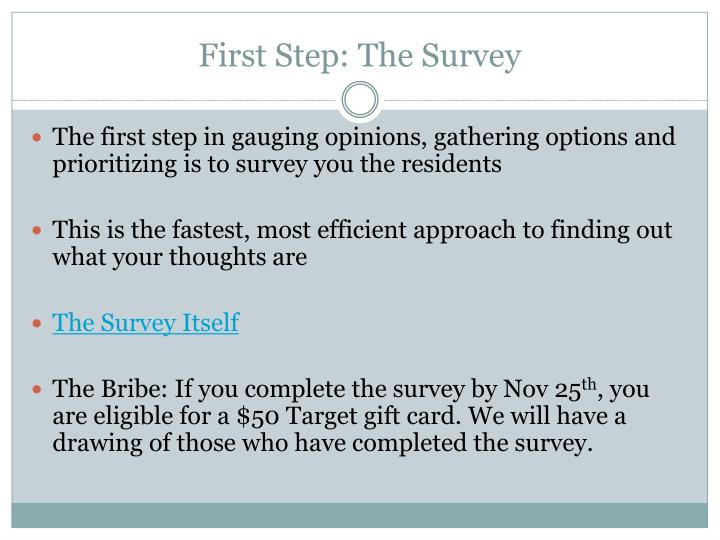 First Step: The Survey