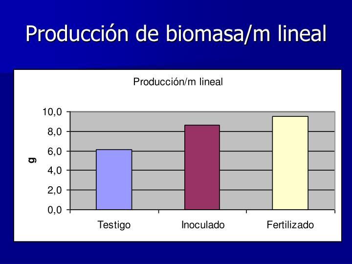 Producción de biomasa/m lineal