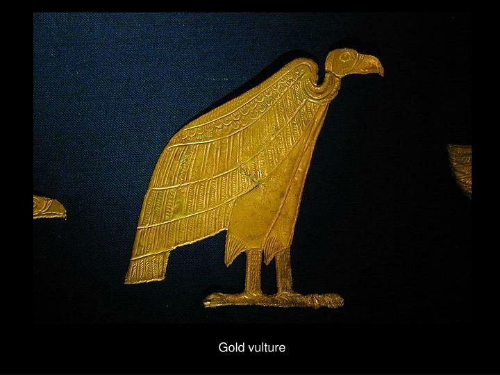 Gold vulture