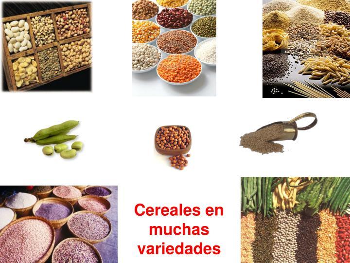 Cereales en muchas variedades