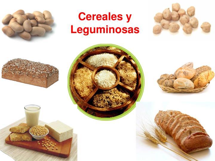 Cereales y