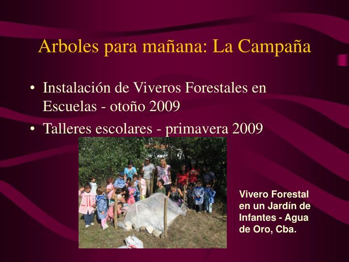 Arboles para mañana: La Campaña