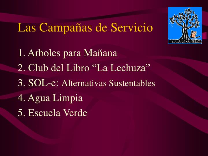 Las campa as de servicio