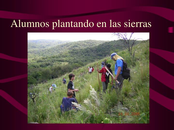 Alumnos plantando en las sierras
