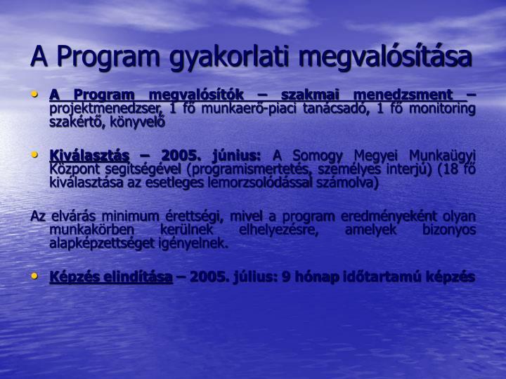 A Program gyakorlati megvalósítása