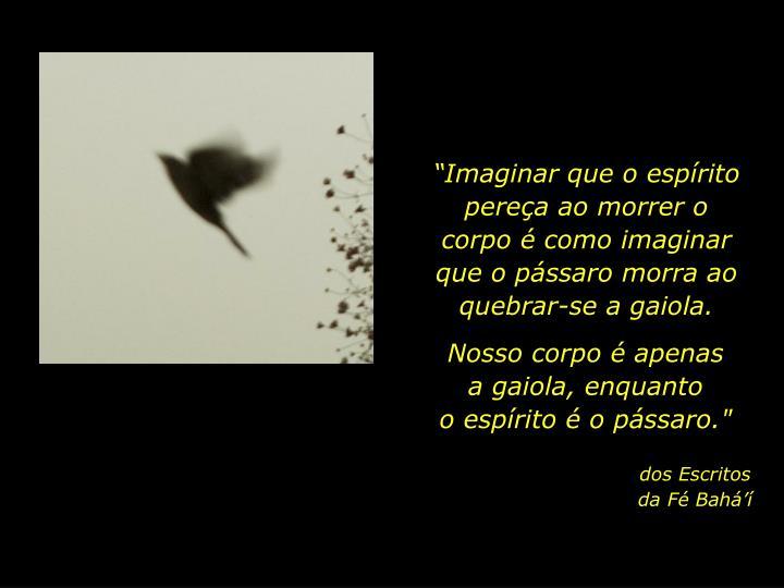 """""""Imaginar que o espírito pereça ao morrer o corpo é como imaginar que o pássaro morra ao quebrar-se a gaiola."""