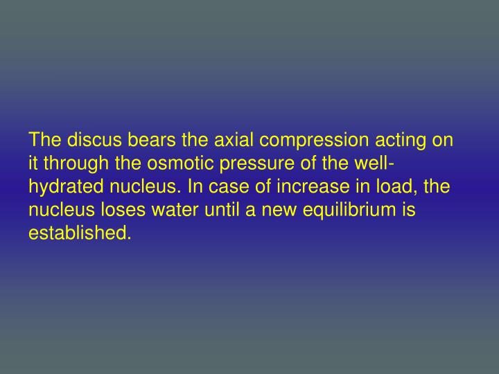 The discus bears the axial compression acting on it through the osmotic pressure of the well- hydrated nucleus. In case of increase in load, the nucleus loses water until a new equilibrium is established.