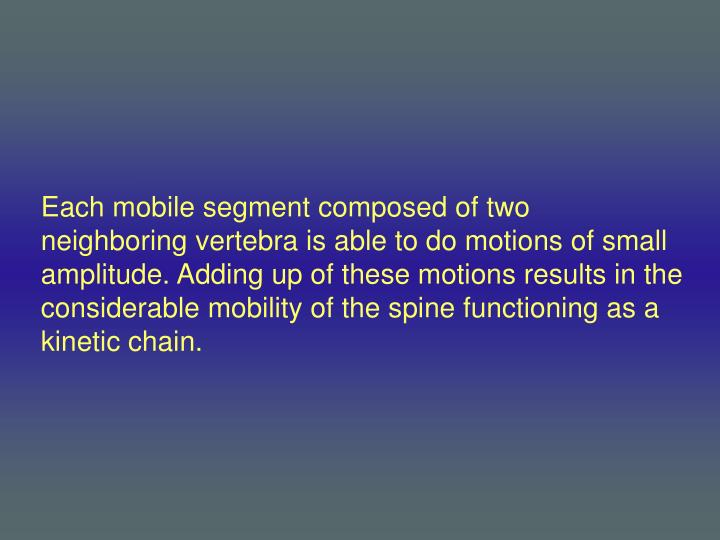 Each mobile segment composed of two neighboring vertebra is able to do motions of small amplitude. Adding up of these motions results in the considerable mobility of the spine functioning as a kinetic chain.