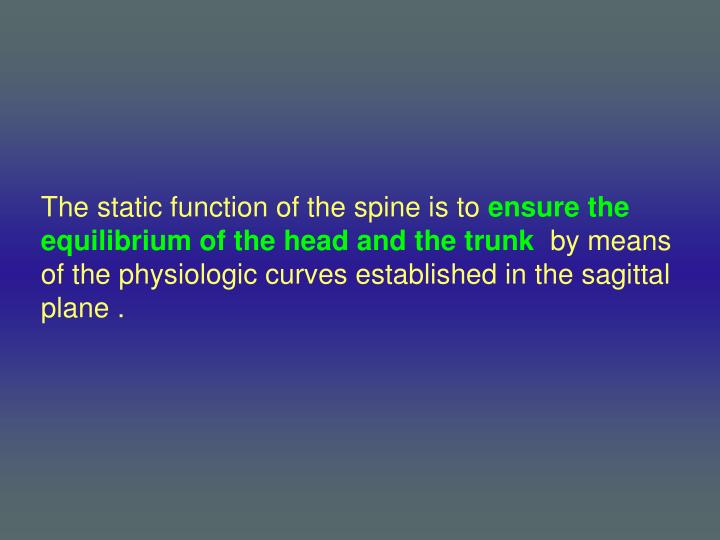 The static function of the spine is to