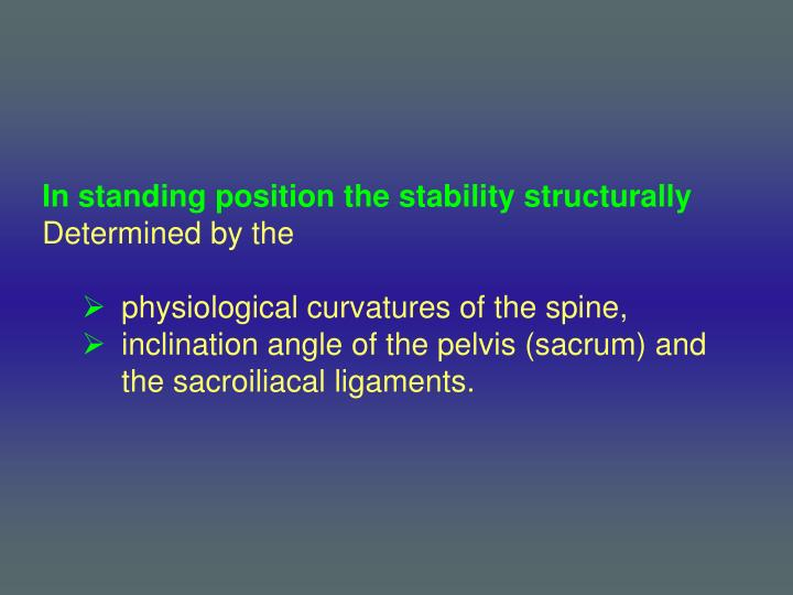 In standing position the stability structurally