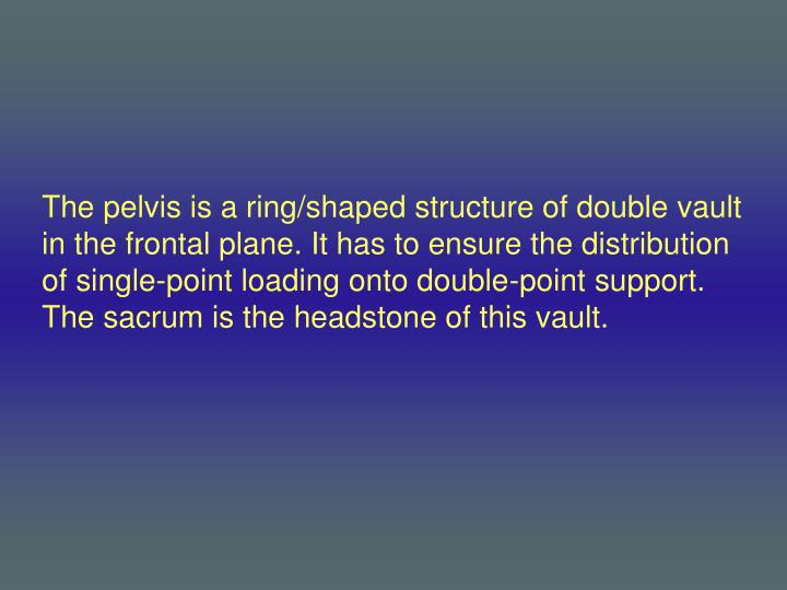 The pelvis is a ring/shaped structure of double vault in the frontal plane. It has to ensure the distribution of single-point loading onto double-point support. The sacrum is the headstone of this vault.
