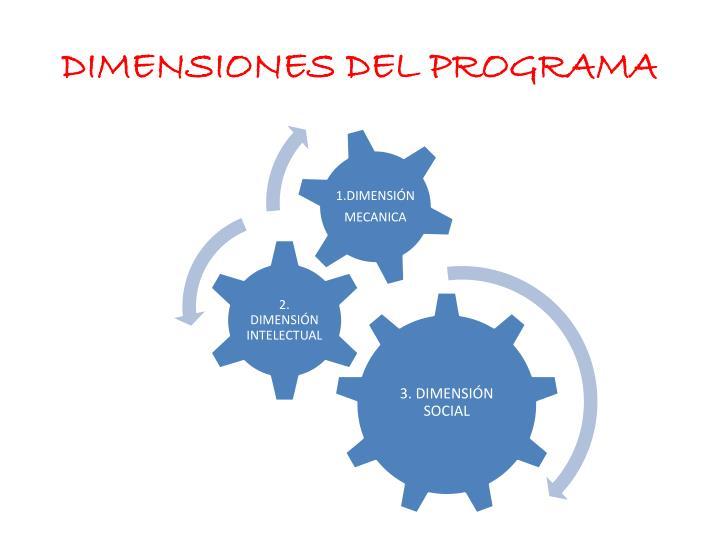 DIMENSIONES DEL PROGRAMA