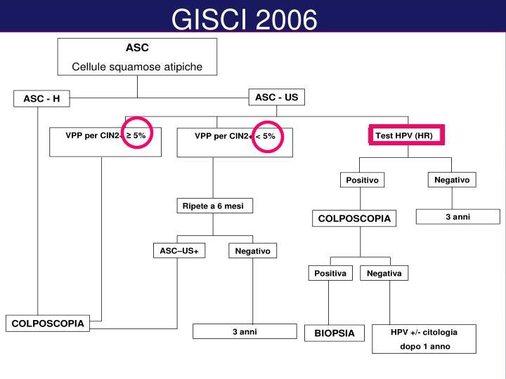 GISCI 2006