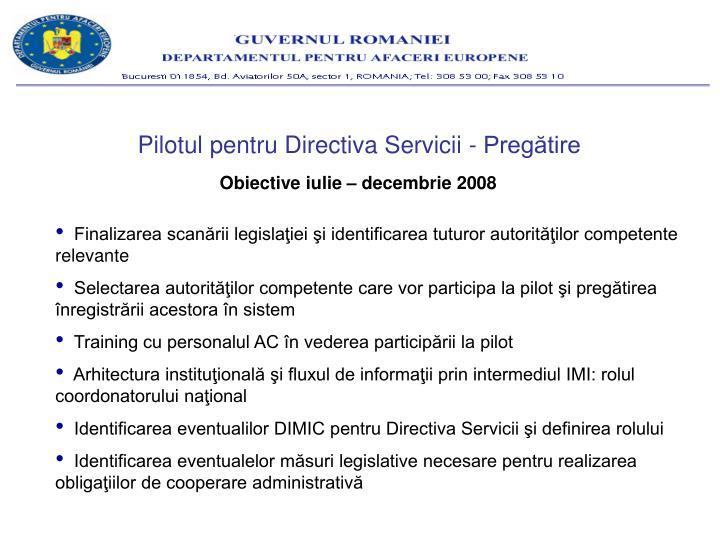 Pilotul pentru Directiva Servicii - Pregătire