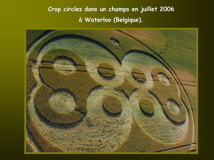 Crop circles dans un champs en juillet 2006