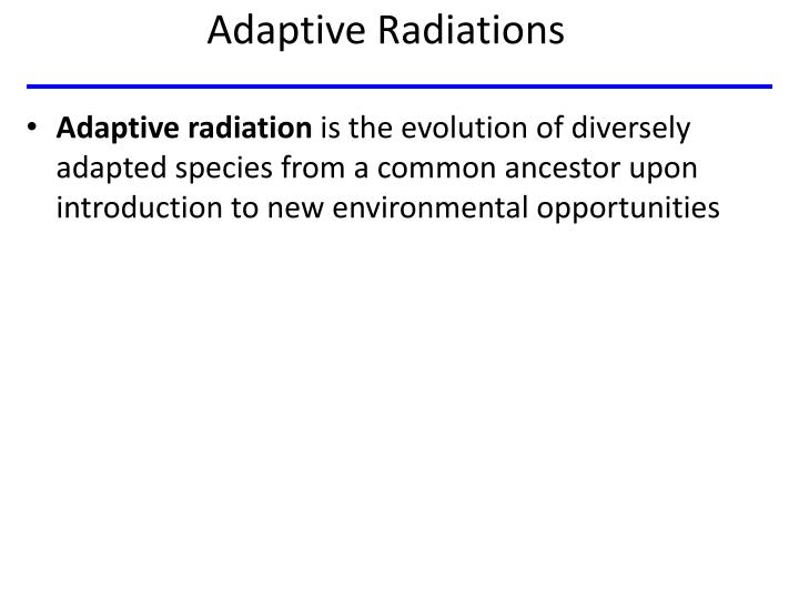 Adaptive Radiations