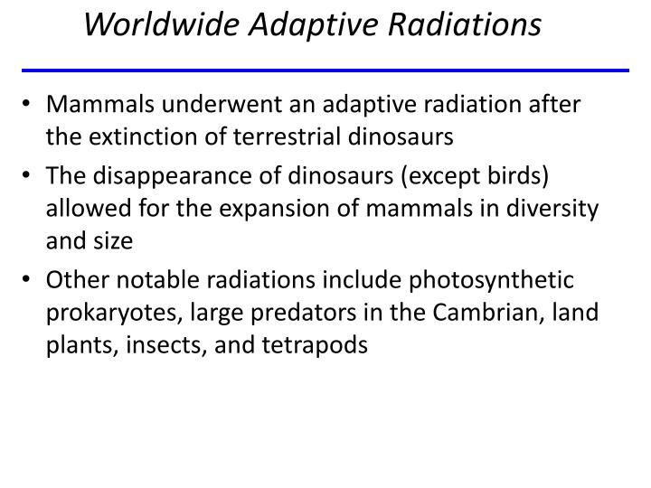 Worldwide Adaptive Radiations