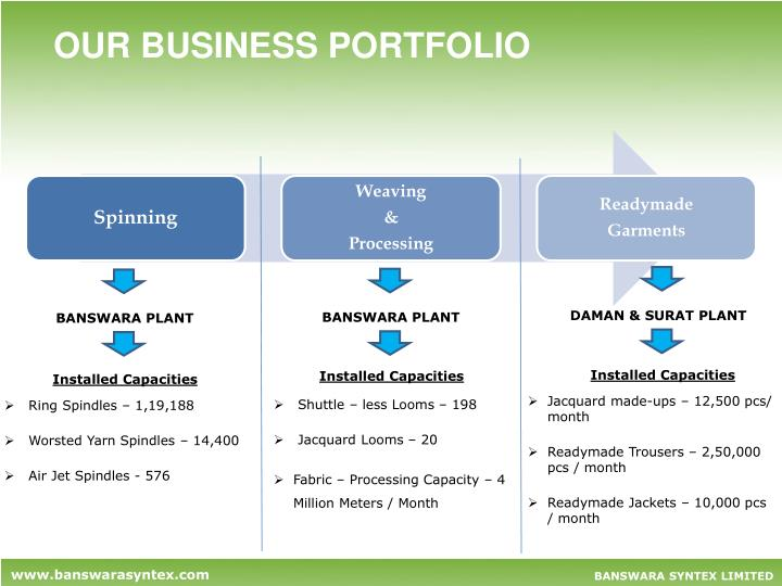 OUR BUSINESS PORTFOLIO