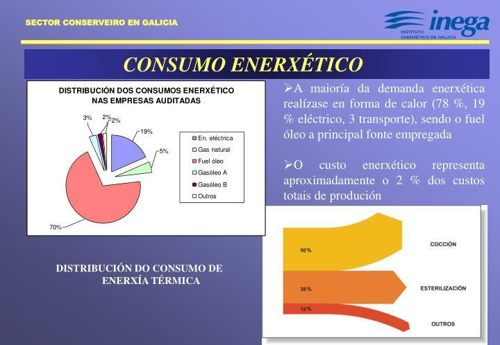 CONSUMO ENERXÉTICO