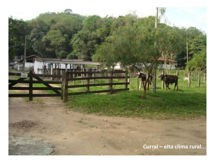 Curral –