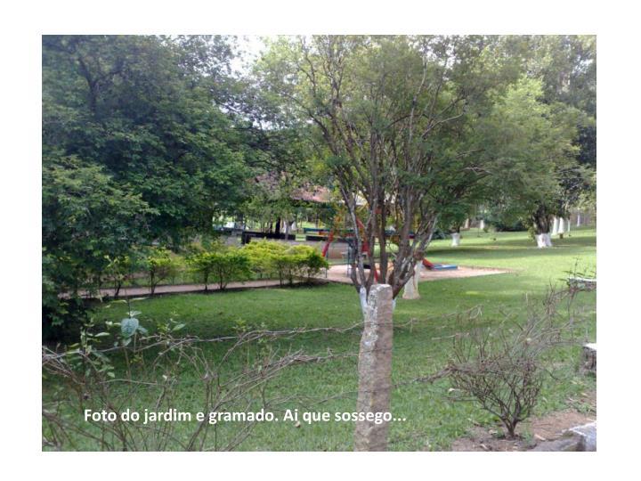 Foto do jardim e gramado. Ai que sossego...