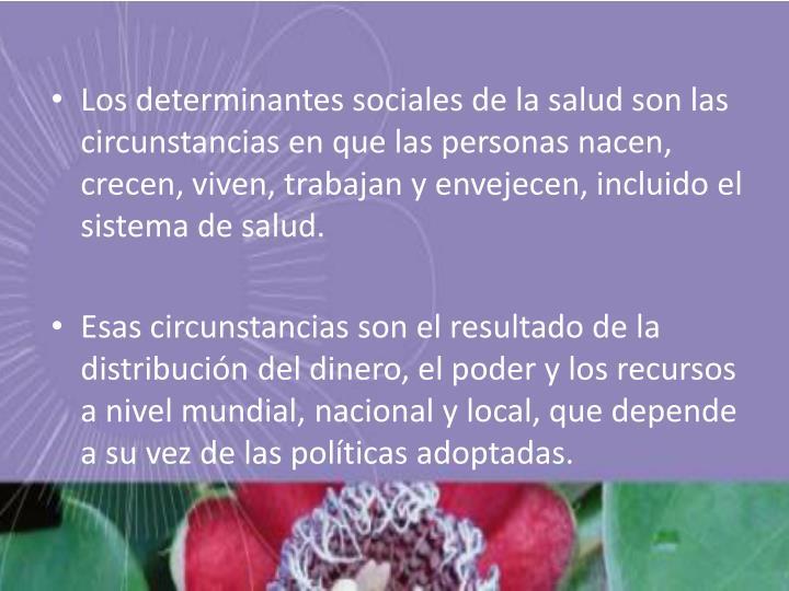 Los determinantes sociales de la salud son las circunstancias en que las personas nacen, crecen, viven, trabajan y envejecen, incluido el sistema de salud.