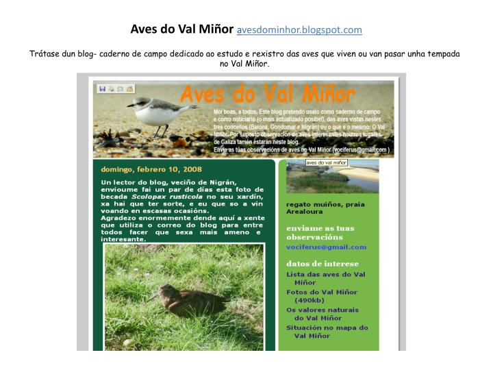 Aves do val mi or a vesdominhor blogspot com