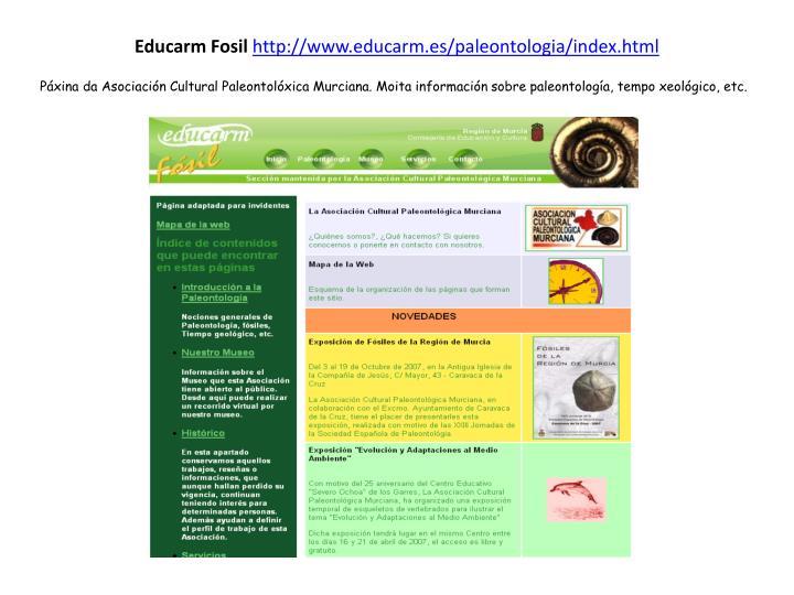 Educarm Fosil