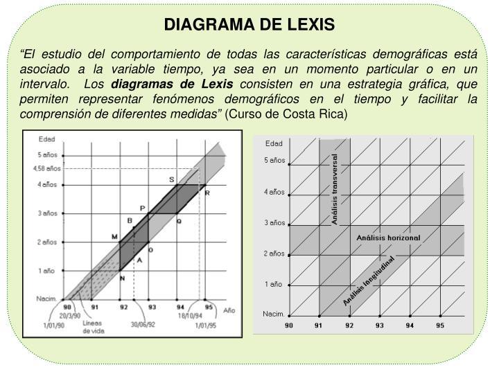 DIAGRAMA DE LEXIS