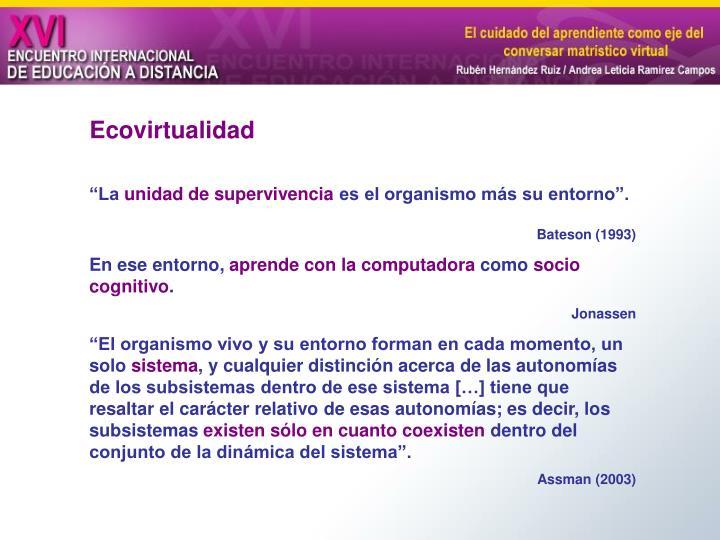 Ecovirtualidad