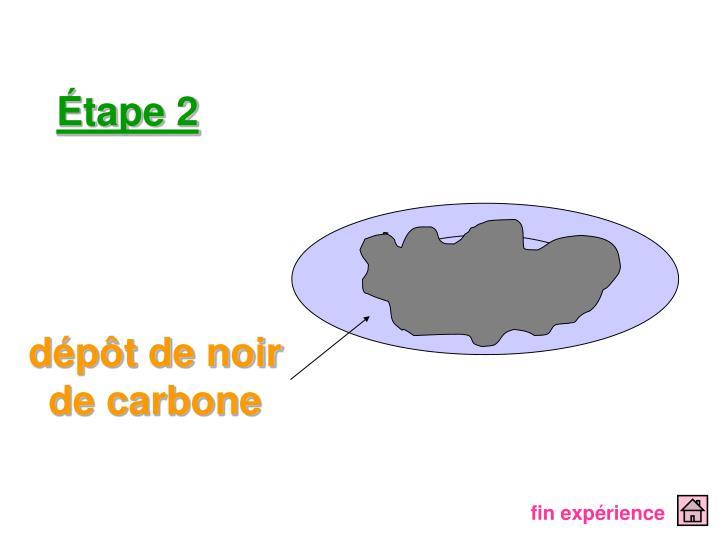 dépôt de noir de carbone