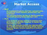 market access1