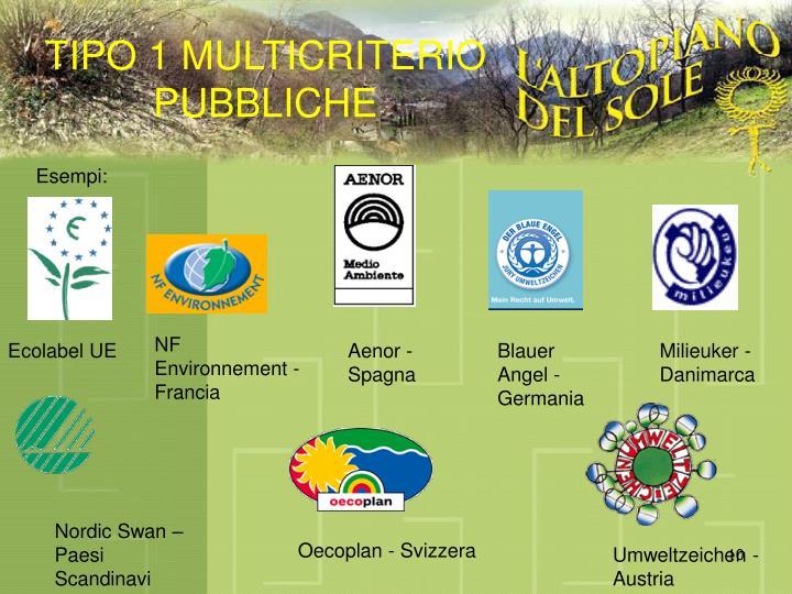 TIPO 1 MULTICRITERIO PUBBLICHE