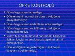 fke kontrol