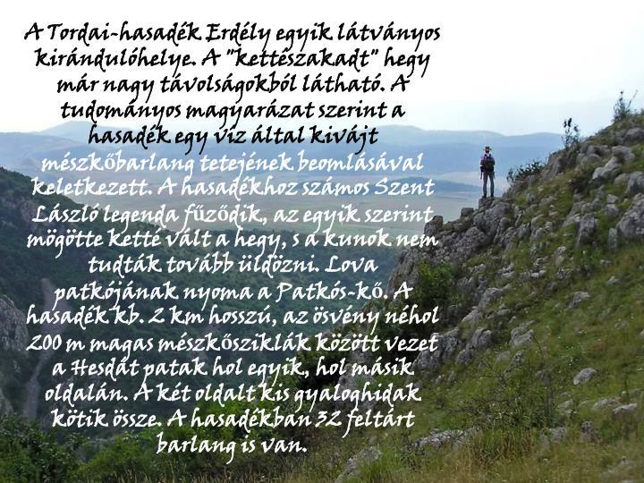 """A Tordai-hasadk Erdly egyik ltvnyos kirndulhelye. A """"kettszakadt"""" hegy mr nagy tvolsgokbl lthat. A tudomnyos magyarzat szerint a hasadk egy vz ltal kivjt"""
