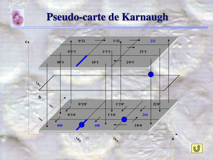 Pseudo-carte de Karnaugh