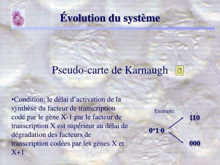 Évolution du système