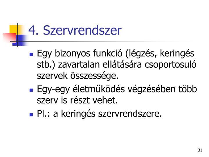 4. Szervrendszer