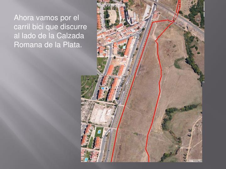 Ahora vamos por el carril bici que discurre al lado de la Calzada Romana de la Plata.