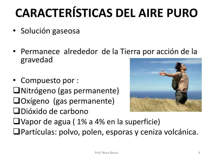 CARACTERÍSTICAS DEL AIRE PURO