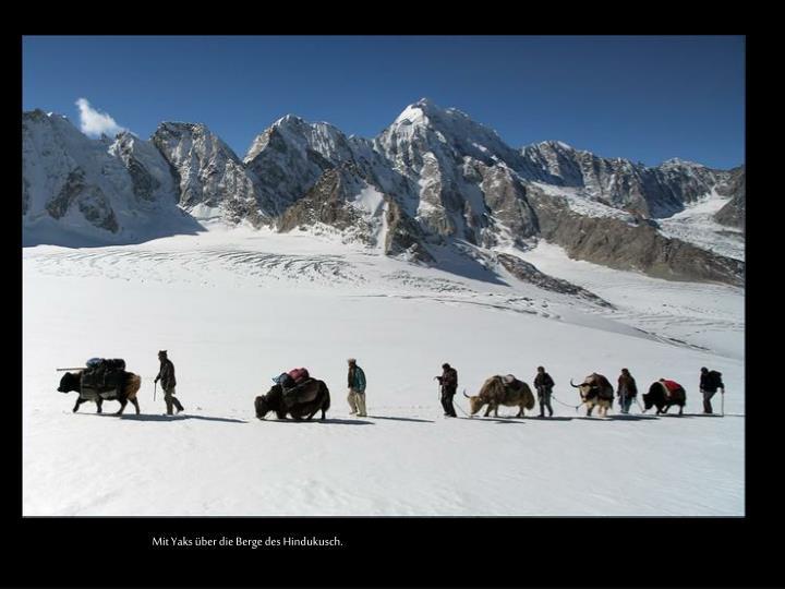 Mit Yaks über die Berge des Hindukusch.