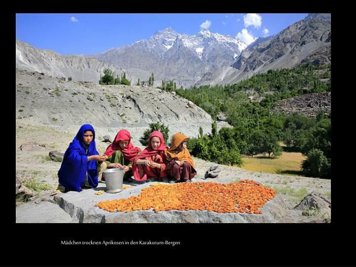 Mädchen trocknen Aprikosen in den Karakorum-Bergen
