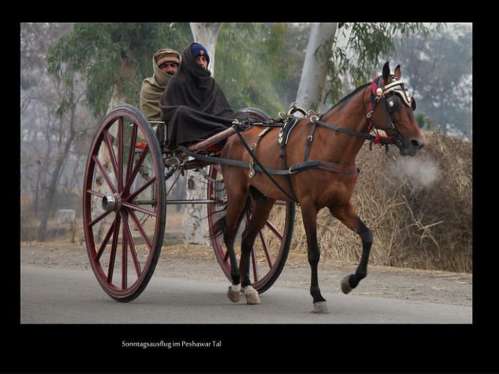 Sonntagsausflug im Peshawar Tal