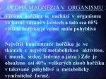 loha magn zia v organismu1