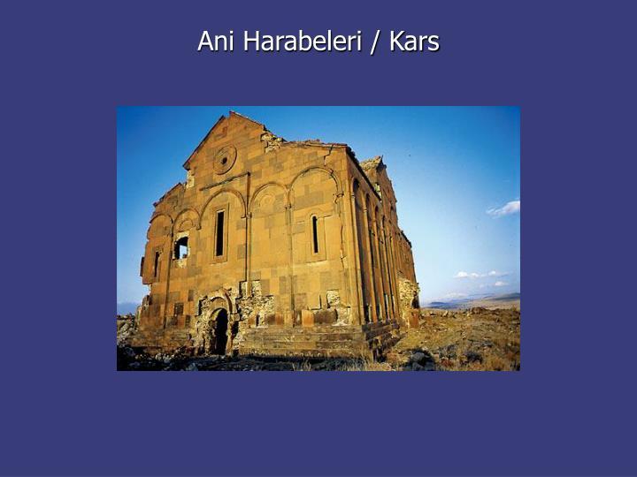 Ani Harabeleri / Kars