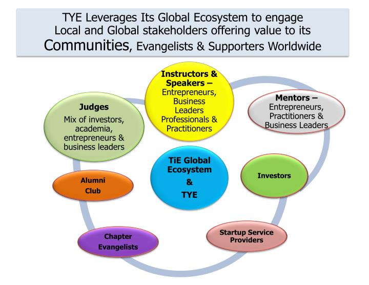 TYE Leverages Its Global