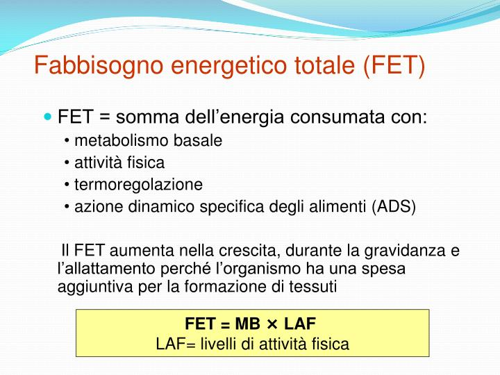 Fabbisogno energetico totale (FET)