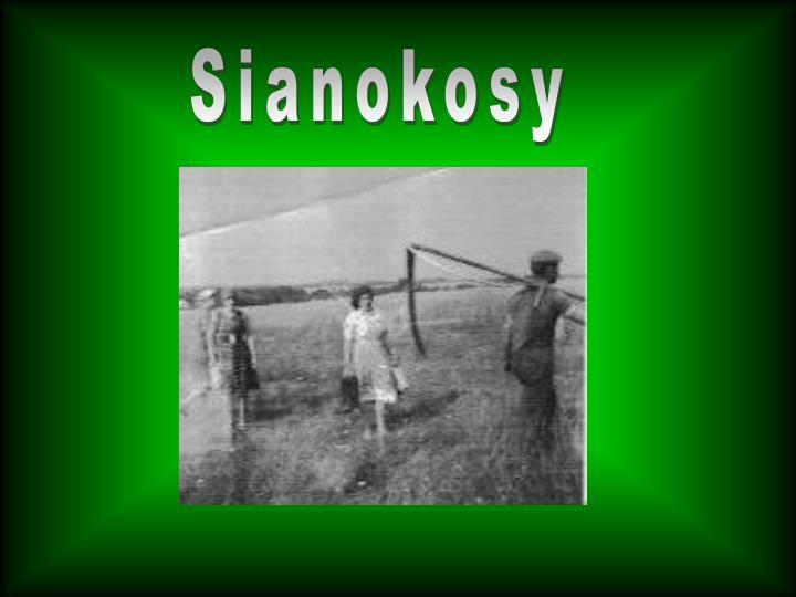 Sianokosy