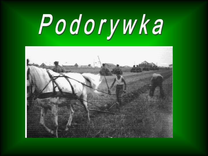 Podorywka